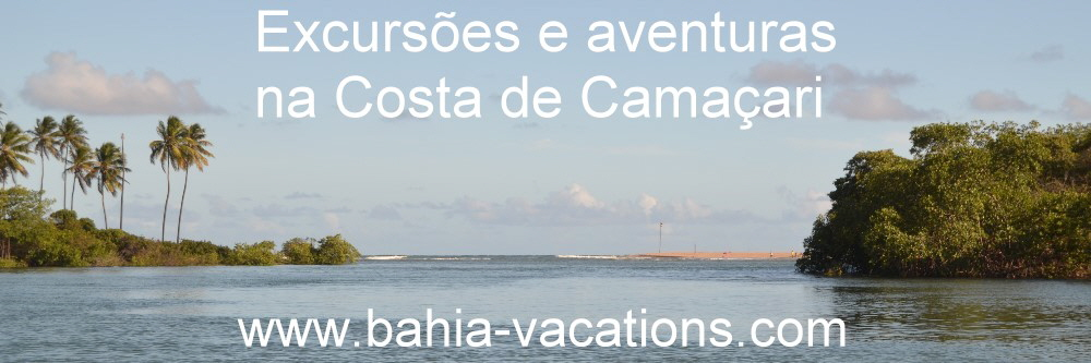 bahia vacations day tours